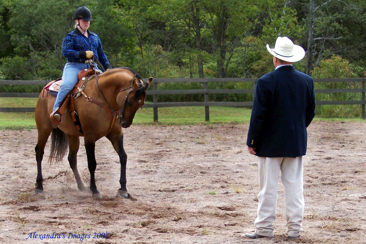 backingupatahorseshowforjudgephoto.jpg