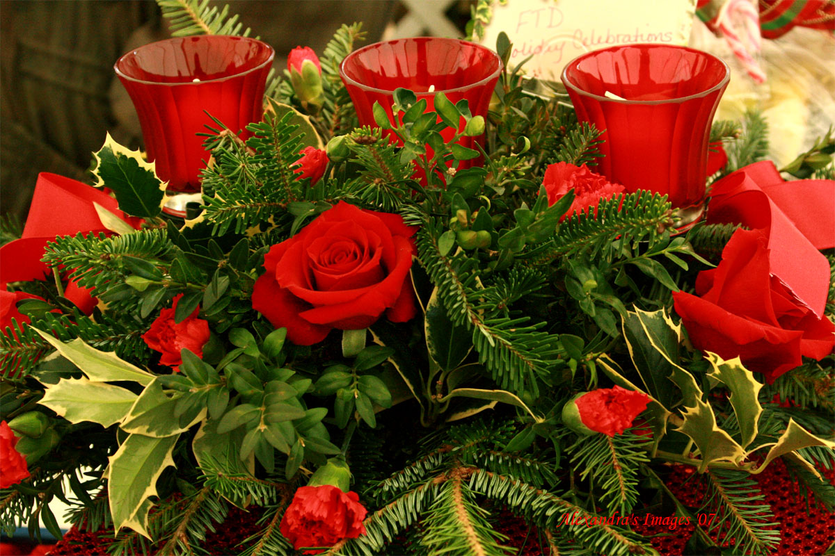 christmasflowers.jpg