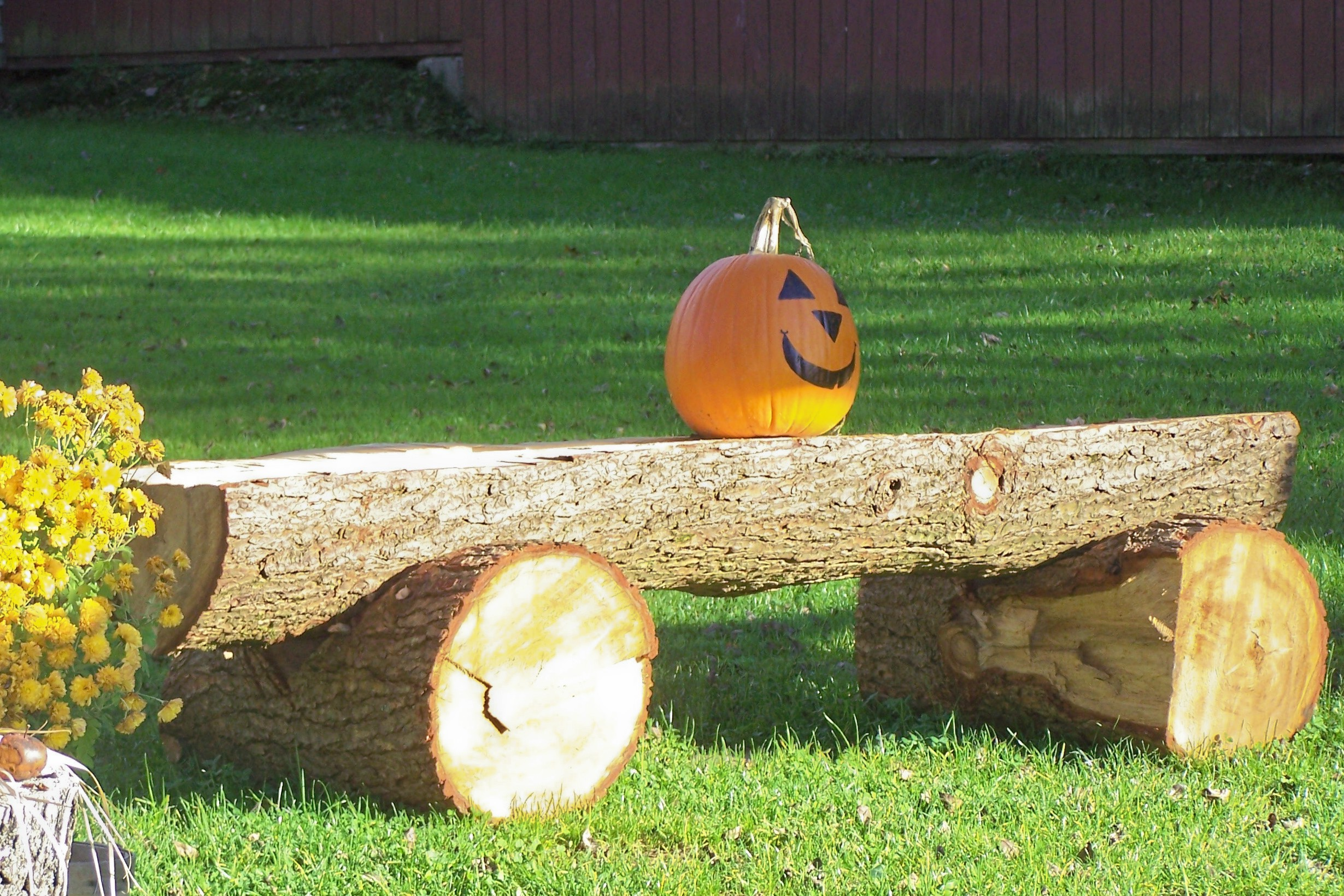 pumpkinonbench.jpg